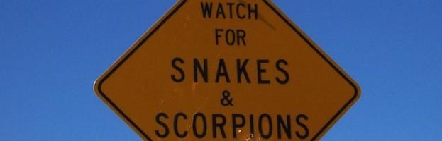 Escorpiones y Seres Humanos